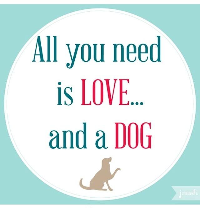 love dog graphic