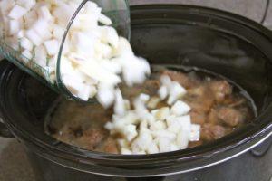 Irish Stew 09