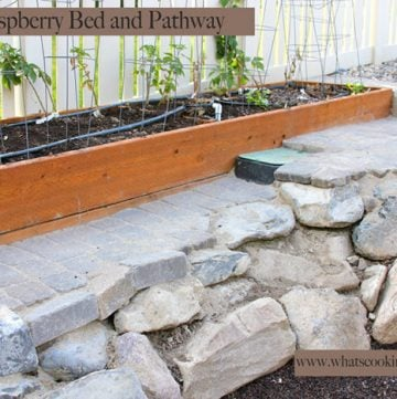 Raspberry Bed and Pathway