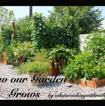 How our garden grows by whatscookingwithruthie.com