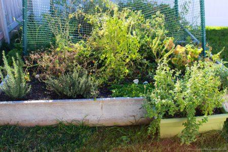 Indoor-Herb-Planter*2
