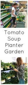Tomato Soup Garden www.cookingwithruthie.com #ad #sponsored #BetterTogether