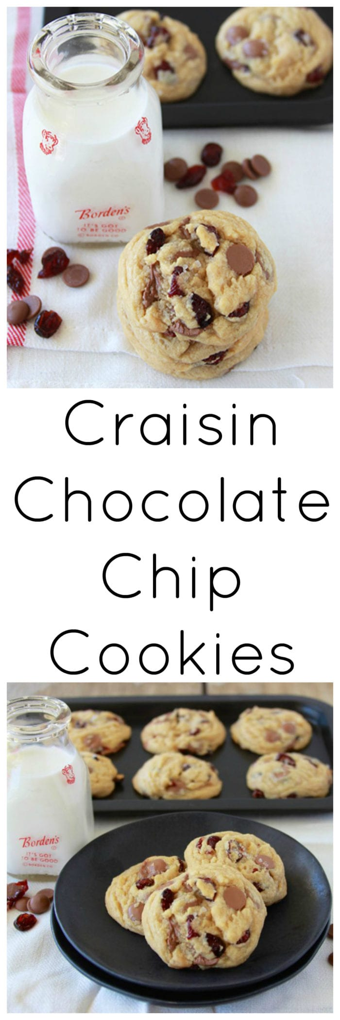 Craisin Chocolate Chip Cookies are a mouth-watering combination in our chewy cookies! www.cookingwithruthie.com