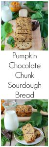 Pumpkin Chocolate Chunk Sourdough Bread is a hearty loaf with all the autumn spices and pumpkin in perfect harmony! www.cookingwithruthie.com