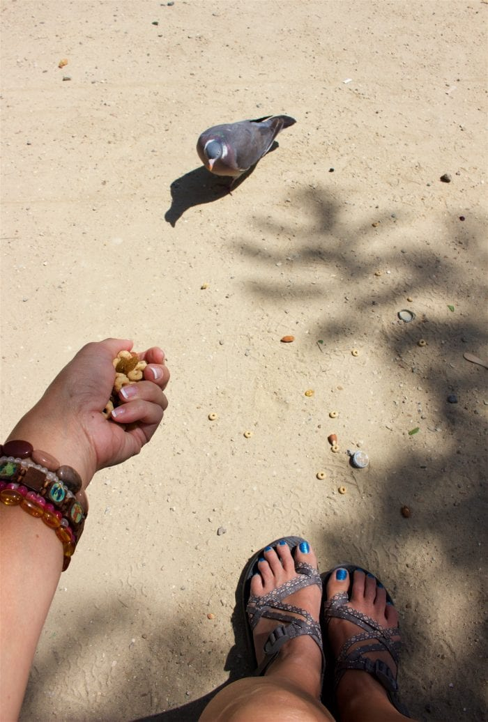 Cheerios Snack Mix & Heart Healthy Travel Tips to keep you fit even when you\'re on the go! by cookingwithruthie.com